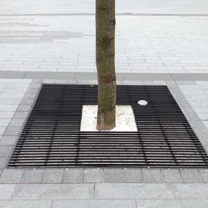 Kents Kensington tree grille for tree protection